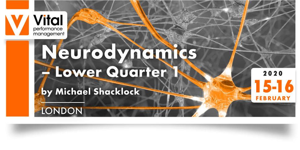 Neurodynamics lower quarter Michael Shacklock 15-16 February 2020 - London